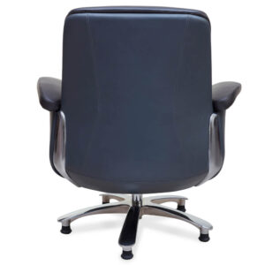 Cooper Executive Visitor Chair
